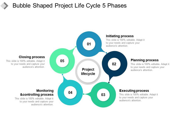 Project Life-Cycle Template